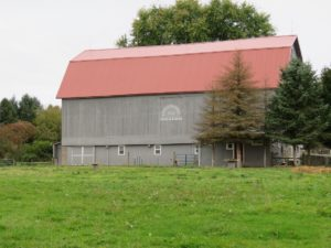 Barn re roof with Barn Red roofing_Palmyra, NY